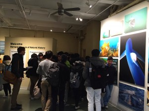 2: ハーバード大学自然史博物館見学