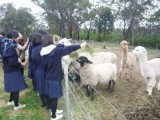 校内の農場にて