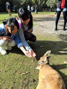 7.25 国立野生自然公園にて - コピー